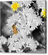 Bee Colored Canvas Print