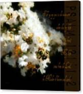 Bee In Crape - Verse Canvas Print