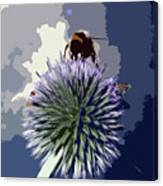 Bee On An Allium Canvas Print