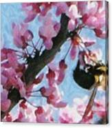 Bee To The Blossom Canvas Print