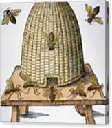 Beehive, 1658 Canvas Print