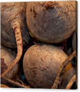 Beets Me Canvas Print