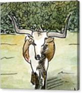 Beevo1 Canvas Print