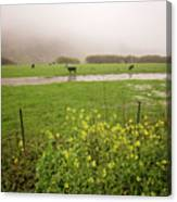 Before The Flood Canvas Print