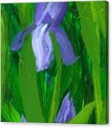 Beginning Of Spring Canvas Print