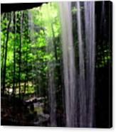 Behind The Falls Canvas Print