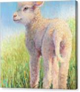 Behold The Lamb Canvas Print