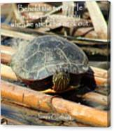 Behold The Turtle Canvas Print
