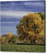 Belfry Fall Landscape 7 Canvas Print