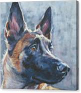 Belgian Malinois In Winter Canvas Print