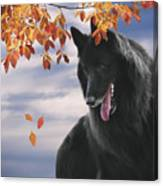 Belgian Shepherd With Autumn Leaves 2 Canvas Print