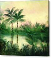 Belize River Canvas Print