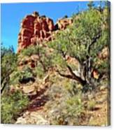 Bell Trail Canvas Print