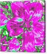 Bella Flora 2 Canvas Print
