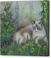 Bella With Ivy And Bamboo Canvas Print