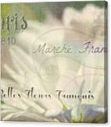 Belles Fleurs Canvas Print
