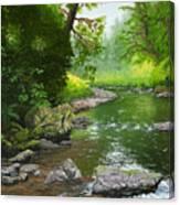 Below Drift Creek Falls Canvas Print