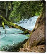Below The Falls Canvas Print