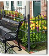Bench By The Tulips Canvas Print
