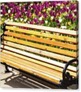 Bench In The Tulips Canvas Print