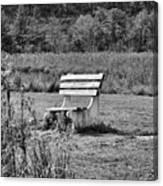 Bench Park Black White  Canvas Print