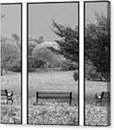 Bench View Triptic Canvas Print