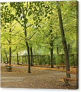 Benches In Wurzburg Canvas Print
