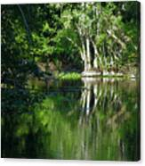 Bend Of The Ocklawaha River Canvas Print