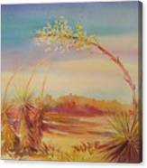 Bending Yucca Canvas Print