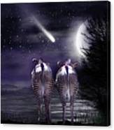 Beneath A Zebra Moon Canvas Print