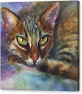 Bengal Cat Watercolor Art Painting Canvas Print