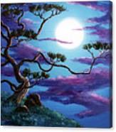Bent Pine Tree At Moonrise Canvas Print