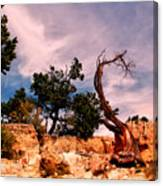 Bent The Grand Canyon Canvas Print