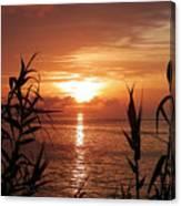 Bermuda Evening Canvas Print