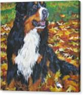 Bernese Mountain Dog Autumn Leaves Canvas Print