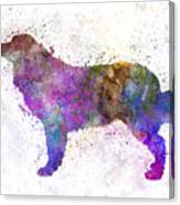 Bernese  Mountain Dog In Watercolor Canvas Print
