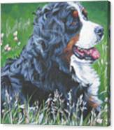 Bernese Mountain Dog In Wildflowers Canvas Print