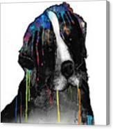 Bernese Mountain Dog Canvas Print