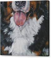 Bernese Mountain Dog Standing Canvas Print