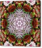 Berry Kaleidoscope Canvas Print