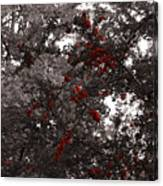 Berry Trees Canvas Print