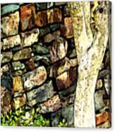 Beside The Wall Canvas Print