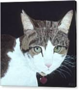 Best Cat Canvas Print