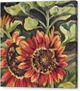 Betsy's Sunflowers Canvas Print