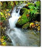 Betwixt The Mossy Rocks Canvas Print