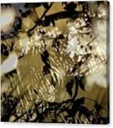Beulahland Canvas Print
