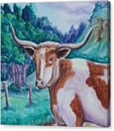 Bevo Road Canvas Print