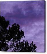 Beyond Dusk In The South Canvas Print