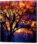 Beyond The Cottonwoods Canvas Print