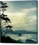 Beyond The Overlook Tree Canvas Print